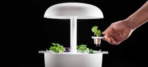 PRODUCTS-AND-PLANTS-Main-pic-0