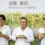 「產品、內容、SEO」金三角 — 綠藤生機營收五倍成長!