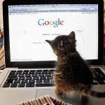 了解Google RankBrain 如何運作,為品牌得出SEO優化方程式!