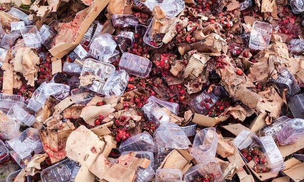 糧食危機、食物浪費