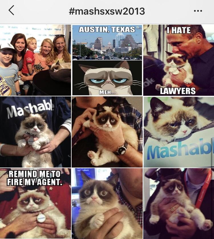 臭臉貓hashtag|數位行銷